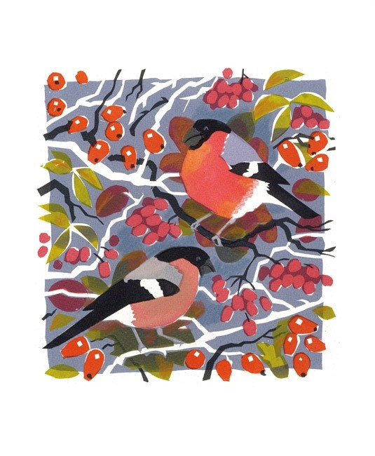 'Bullfinches' by Carry Akroyd (A135w)
