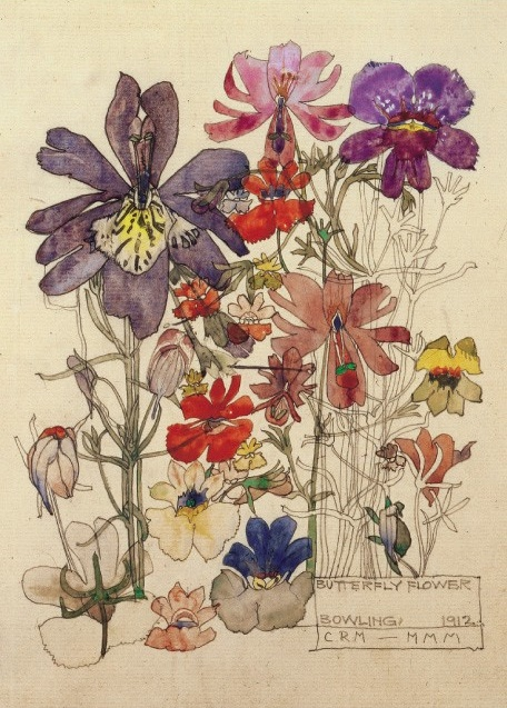 'Butterfly Flower, Bowling' by Charles Rennie Mackintosh (V049)