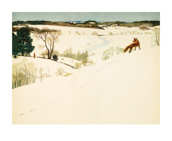 'Fox in Winter' by N C Wyeth (A784w) NEW