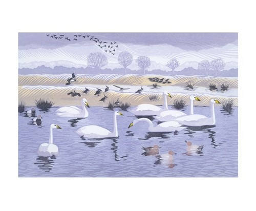 'Seven Swans' by Niki Bowers (A794) *